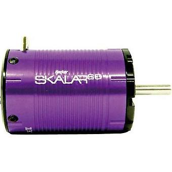 Model car brushless motor Hacker Skalar SC kV (RPM per volt): 5000 Turns: 4.5