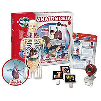 Cefa anatomy Cefa (Toys , Educative And Creative , Science And Nature)