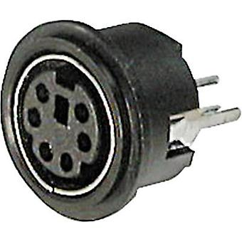 Mini DIN connector Socket, vertical vertical Number of pins: 4 Black ASSMANN WSW A-DIO-TOP/04 1 pc(s)