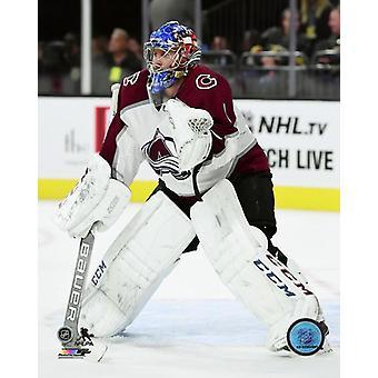 Semyon Varlamov 2017-18 Action Photo Print