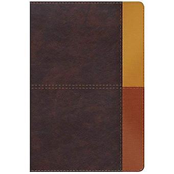 NIV Rainbow studie Bijbel, cacao/Terra Cotta/oker Leathertouch