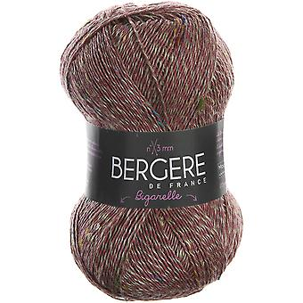 Bergere De France Bigarelle Yarn-Rose BIGARELL-29713
