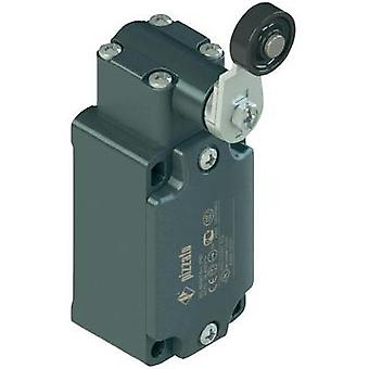 Limit switch 250 Vac 6 A Tappet momentary Pizzato Elettrica FD 531-M2 IP67 1 pc(s)