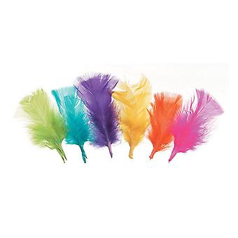 14g Neon Assorted Colour Craft Feathers