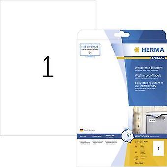 Herma 4866 Labels 210 x 297 mm Film White