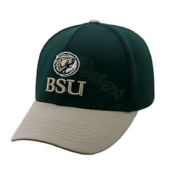 Bemidji State Beavers NCAA TOW Two Tone Stretch Fitted Hat