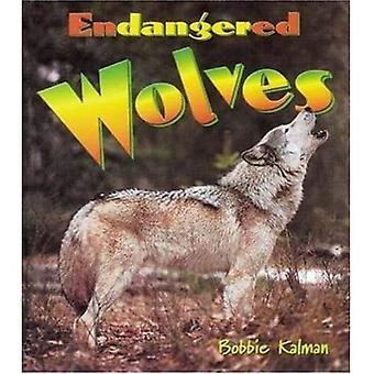 Endangered Wolves (Earth's Endangered Animals)