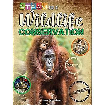 Emplois de vapeur dans la Conservation de la faune (emplois de vapeur vous allez adorer)