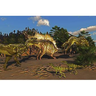 Liten Juravenator reptiler klocka som en Stegosaurus försöker försvara sig från två Torvosaurus dinosaurier affisch Skriv