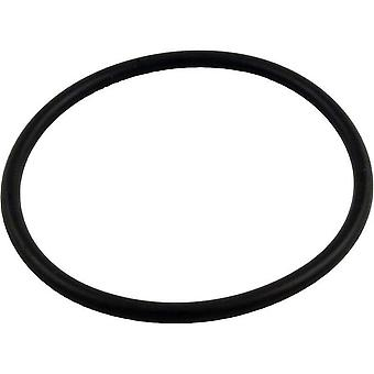 Pentair PacFab 352602 590 Lid O-Ring for Hydro Pump