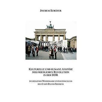 Kulturelle und humane Anste der friedlichen Revolution in der DDR by Schfer & Jochem