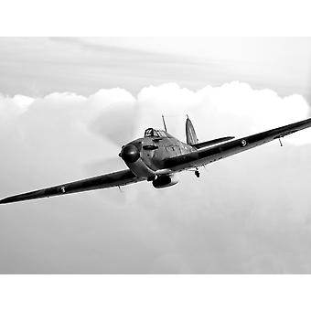 A Hawker Hurricane aircraft in flight over Galveston Texas Poster Print