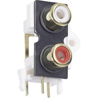 RCA connector Socket, vertical vertical Number of pins: 2 Gold, Red, White BKL Electronic 072384 1 pc(s)