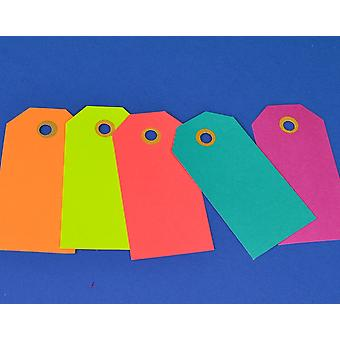 20 Large Luggage Style Bright Coloured Tags for Crafts | Christmas Gift Wrap