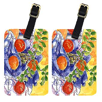 Carolines Treasures  6047BT Pair of 2 Apples Luggage Tags