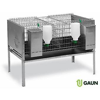 Gaun rabbit cage model departments Europa 2 44755 (Garden , Animals , Rabbits , Warren)