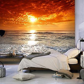 Wallpaper - Marvelous sunset