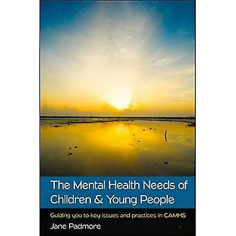 The Mental Health Needs of Children & Young People: Guiding you to key issues and practices in CAMHS