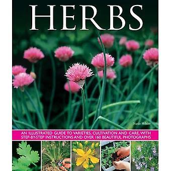 Herbes: An Illustrated Guide to variétés, de culture et de soins, avec des Instructions étape par étape et plus de 160 belle...