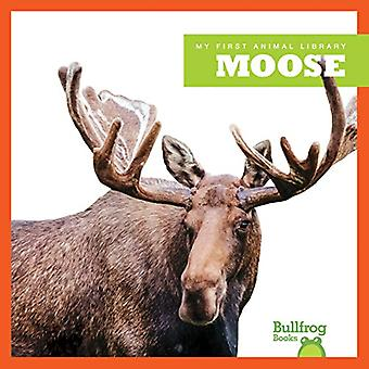 Moose (My First Animal Library)