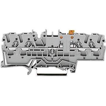 N terminal 5.20 mm Pull spring Configuration: L Grey WAGO 2002-1871 1 pc(s)