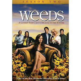 Weeds - Weeds: Stagione 2 [DVD] Stati Uniti importare