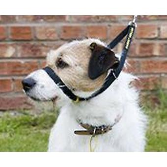 Canny Dog Canny Collar in Black (Dogs , Training Aids , Leashes, Harnesses & Headcollars)