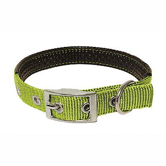 Boby Collar Lisa Bobo (Dogs , Collars, Leads and Harnesses , Collars)
