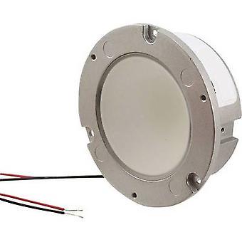 HighPower LED module Neutral white 1250 lm