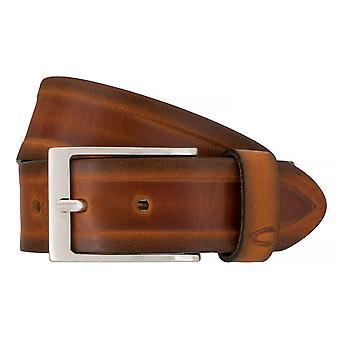 Camel active belts men's belts leather jeans belt camel 7637