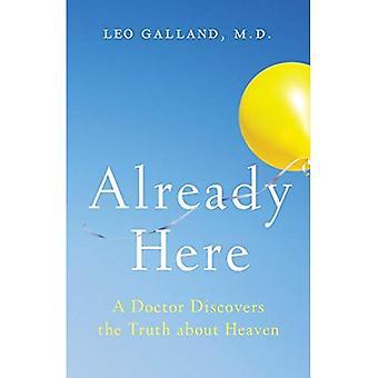 Déjà là: Un médecin découvre la vérité sur ciel