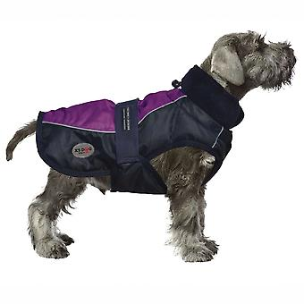 Xt-Dog Abrgio Sport (Dogs , Dog Clothes , Coats and capes)
