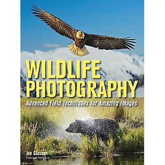 Wildlife Photography - Advanced Field Techniques for Tracking Elusive