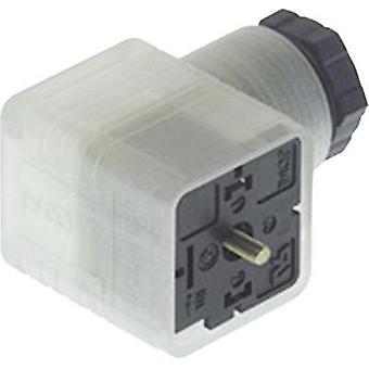 Hirschmann 934 415-002 GDML 2016 LED 24 HH Contact Box With Functional Display Transparent Number of pins:2 + PE