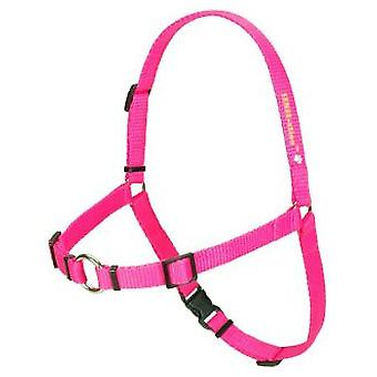 Softouch Harness Sense-ation Training Soft (Dogs , Walking Accessories , Harnesses)