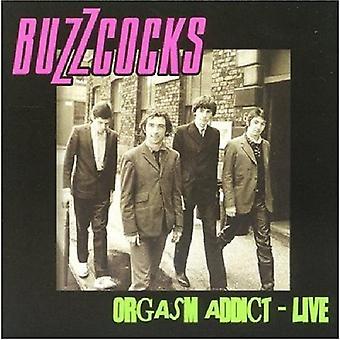 Buzzcocks - orgazm Addict Live [CD] USA import
