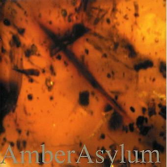 Amber Asylum - frosset i Amber [CD] USA import