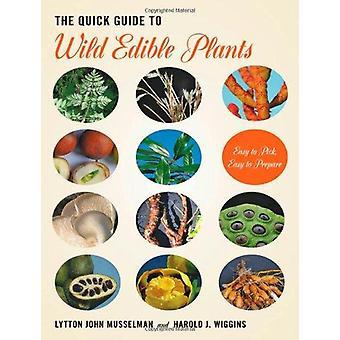 Guia rápido de plantas selvagens comestíveis - fácil Pick - fácil de preparar