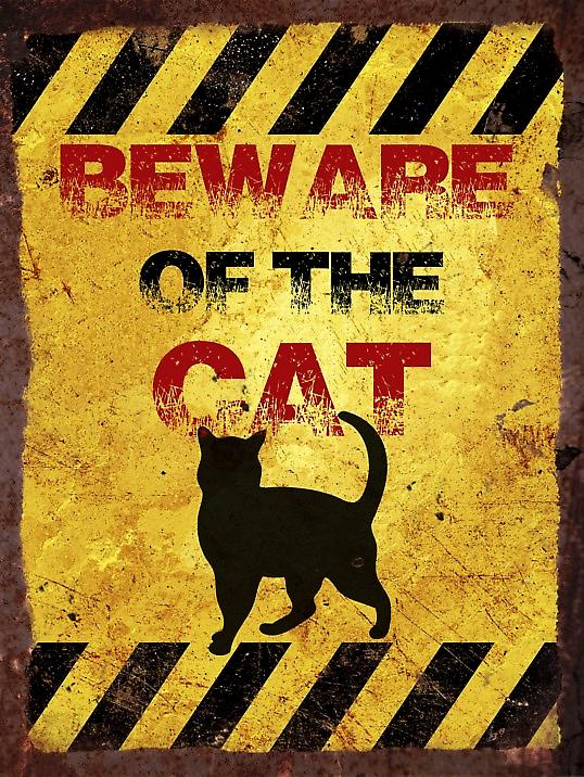 Vintage Metal Wall Sign - Beware of the cat