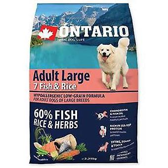Ontario Adult Fish & Rice Large Breed (Hunde , Hundefutter , Trockenfutter)