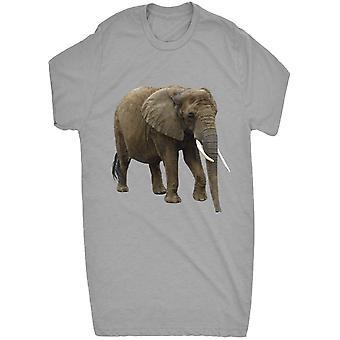 Gerenommeerde Wild leven olifant