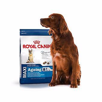 Royal Canin Maxi 8 del envejecimiento del perro + alimento mezclar 15kg en seco
