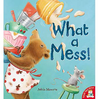 What a Mess! by Adria Meserve - 9781848954762 Book