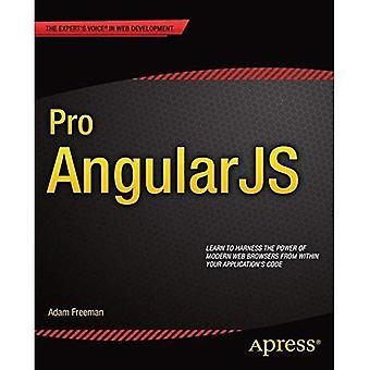 Pro AngularJS (Experts röst i webbutveckling)