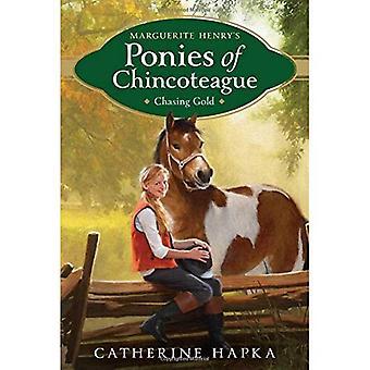 Het achtervolgen van goud (Marguerite Hendriks pony's van Chincoteague)