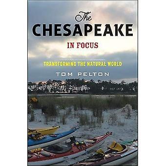 La bahía de Chesapeake en foco: transformar el mundo Natural