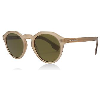 Burberry BE4280 375073 Matte Brown BE4280 Round Sunglasses Lens Category 3 Size 48mm