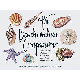 Die Beachcomber Companion - ein illustrierter Führer zu sammeln und ich