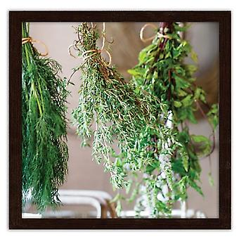 Picture In Brown Frame, Fresh Herbs 2
