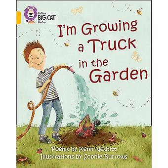 Collins Big Cat - I'm Growing a Truck in the Garden: Band 09/Gold (Paperback)